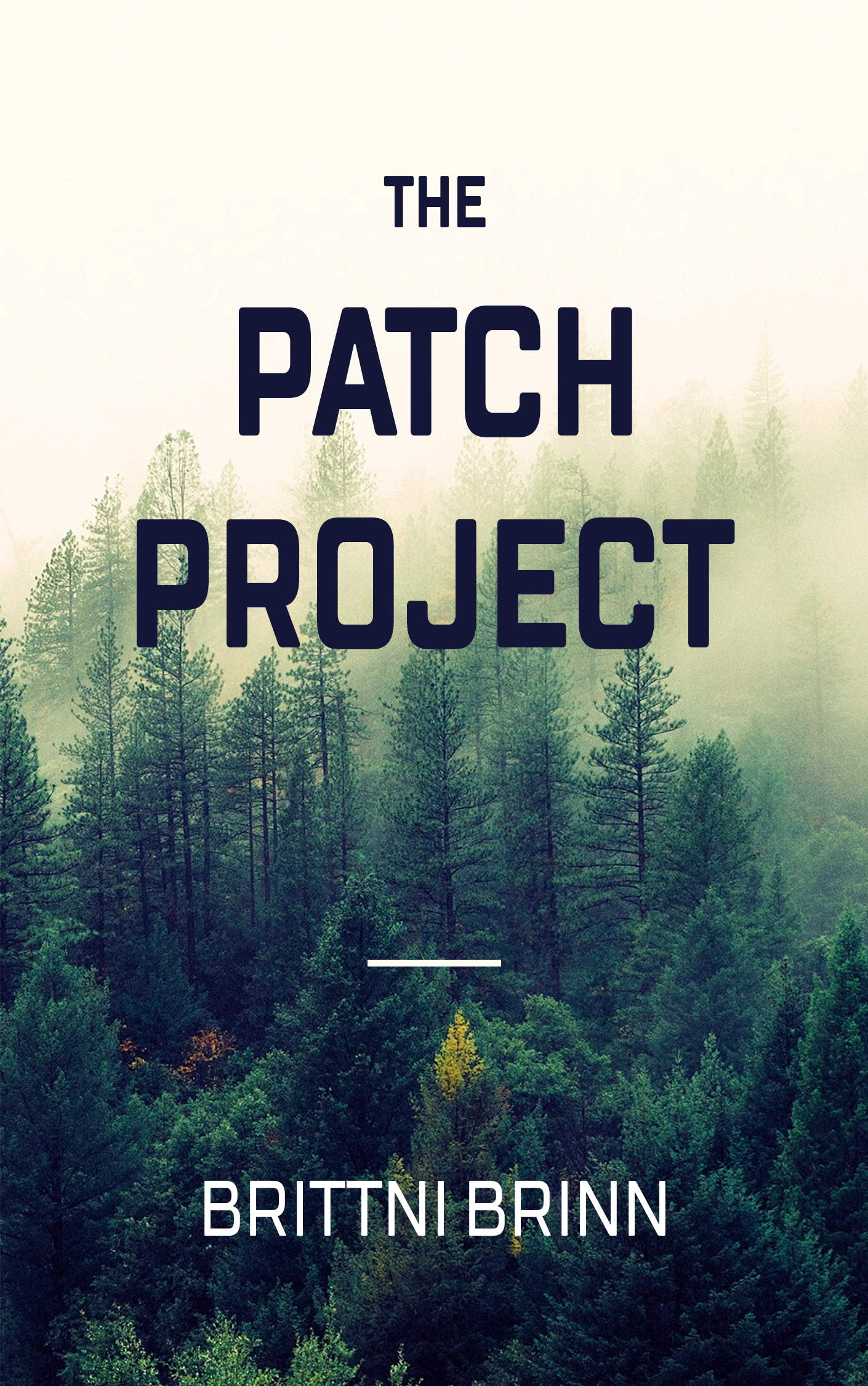 the-patch-project